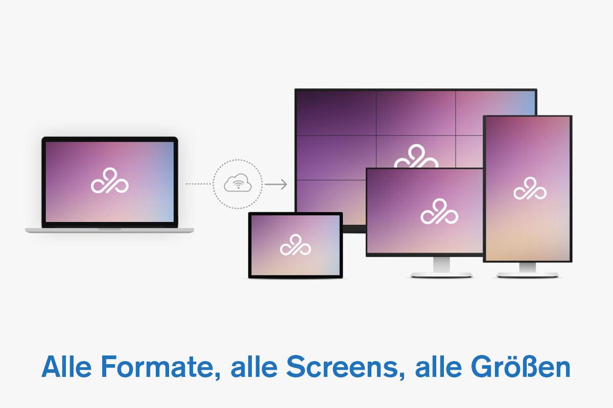 MagicInfo Server - Formate